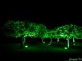 kronach-leuchtet-2014-31