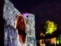 kronach-leuchtet-2014-33