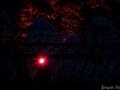 kronach-leuchtet-2014-66